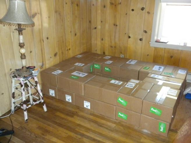 boxbeds1